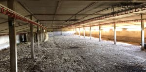 Removing asbestos from farm buildings